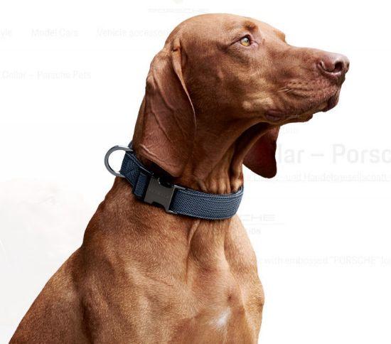 Picture of Dog Collar, Porsche Pets
